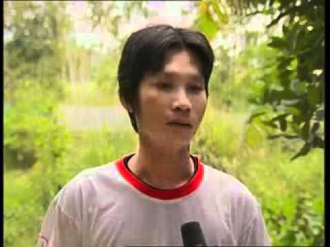 Nhanonglamgiau.com - Kỹ thuật nuôi rắn ri voi