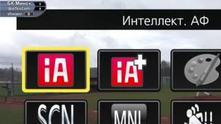 Бейсбол. Континентальный кубок. БК Минск - Biotexcom KNTU