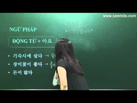 10.ĐỘNG/ TÍNH TỪ TRONG TIẾNG HÀN (2) 한국어 동사 2 (99Hàn Quốc)
