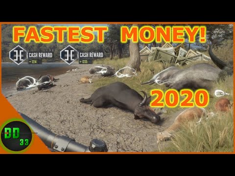 Fastest Money Glitch 2020! Call Of The Wild