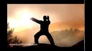 Qi Gong Music Sounds: Relaxing Tai Chi Music and QiGong Meditation Nature Music