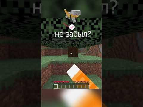 Майнкрафт, НО это ТНТ РАН   WICSUR #shorts #minecraft