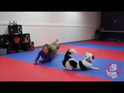 I've Got Faith ~ Canine Freestyle Routine