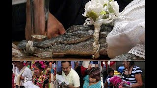 Bizarre moment Mexican mayor marries CROCODILE to 'bring luck' to local fishermen