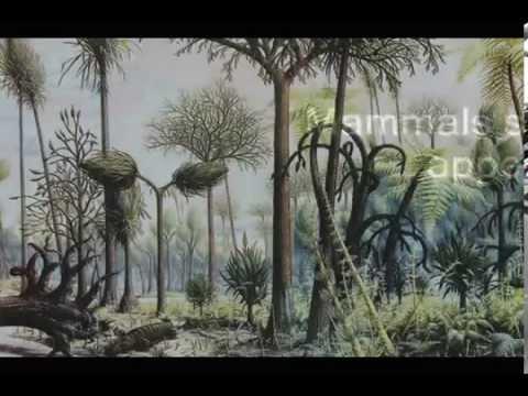 Dinosaur basics The Triassic period