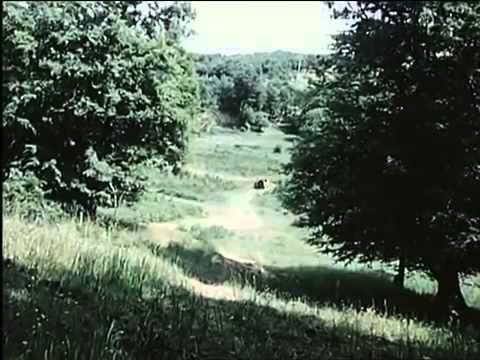 Das unsichtbare Visier Folge 2: Das Nest im Urwald DFF, 1973