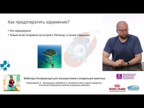 Скороходов В. А. - Вакцинации и обработки от гельминтов, блох и других паразитов