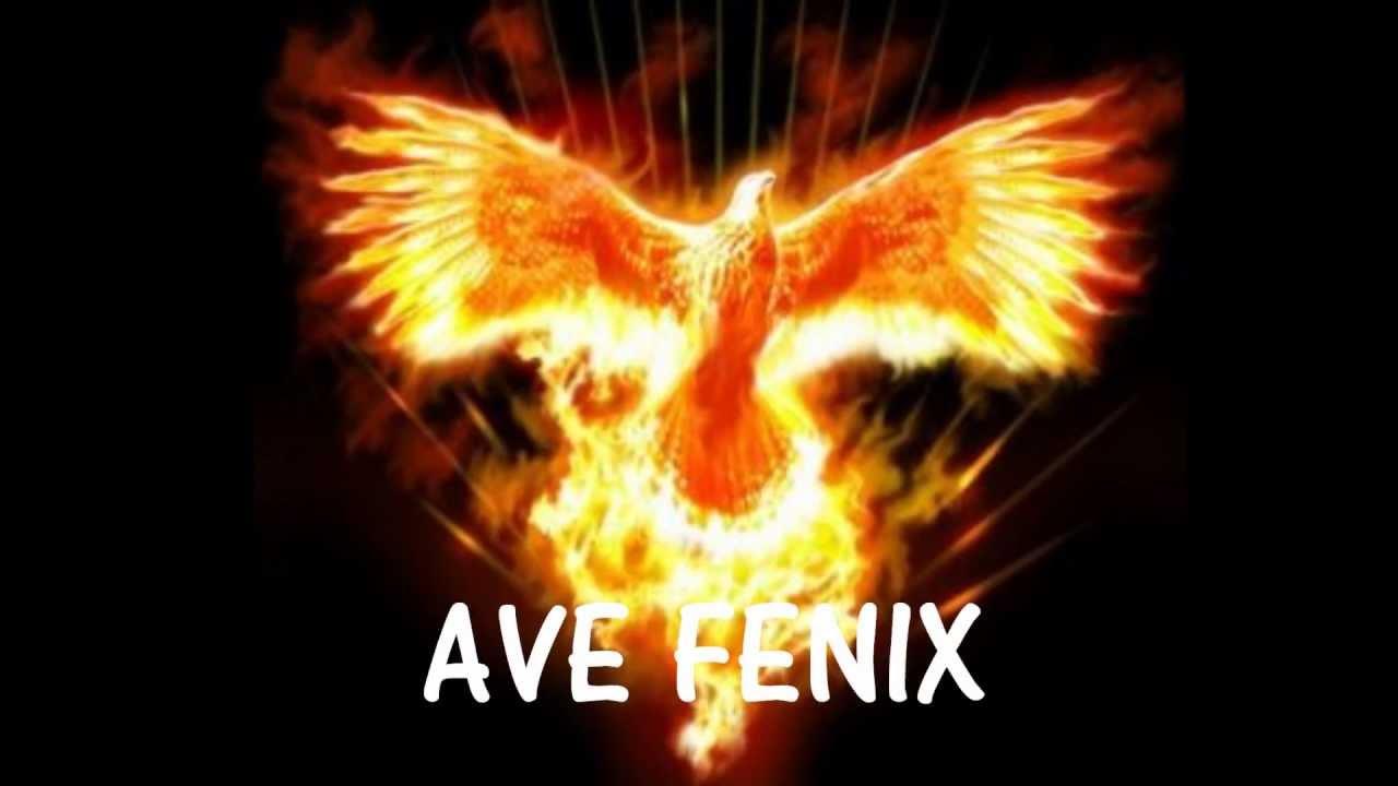 Despierta Ave Fenix Youtube