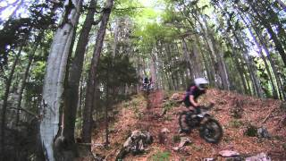 Mountain Biking Holidays - hide trail
