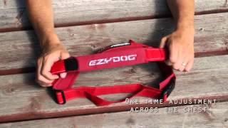 Ezydog Quickfit Göğüs Tasması Dog Harness   Simple Support Www.turuncupet.com