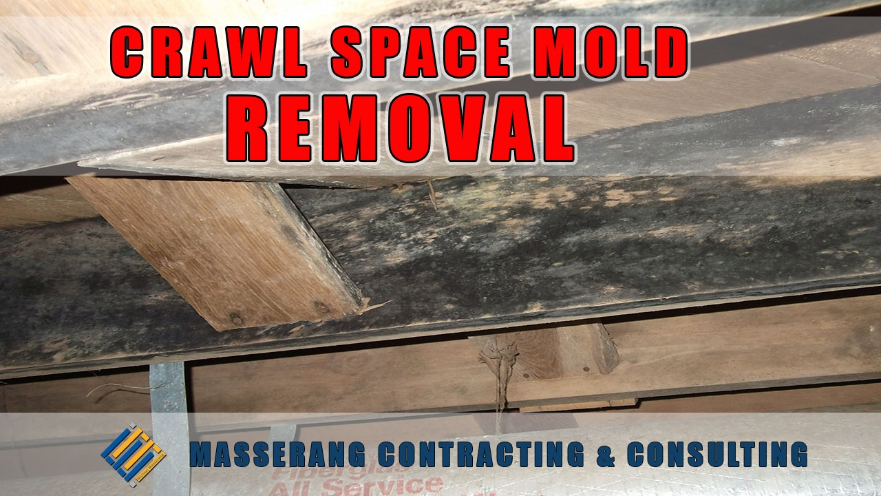 Crawl space mold removal black mold 7047876972 youtube crawl space mold removal black mold 7047876972 solutioingenieria Choice Image