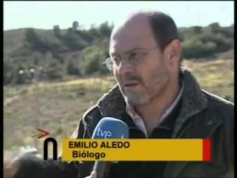 Proyecto Life  en Sierra Espuña Murcia