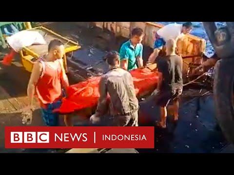 """ABK Indonesia Di Kapal China: """"Kami Hanya Ingin Mereka Dikuburkan Secara Layak"""" - BBC News Indonesia"""
