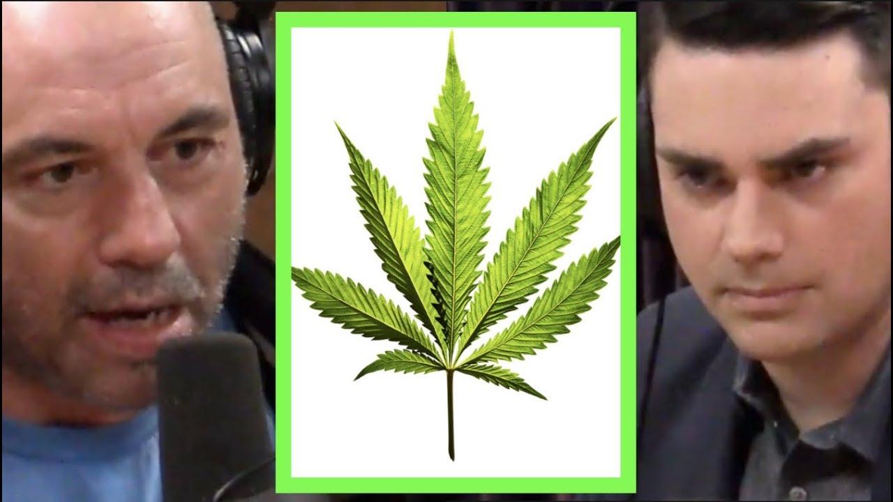 Joe Rogan & Ben Shapiro Discuss Marijuana Use