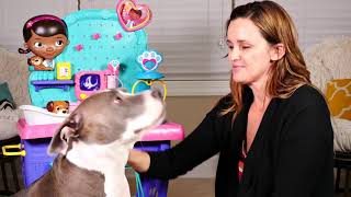 Zumi visits Doc McStuffins HUGE Check-up Center - Disney Toy Veterinarian Station for Pets