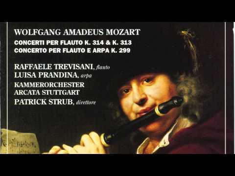 Wolfgang Amadeus Mozart - Allegro - Concerto per Flauto, Arpa e Orchestra in do Maggiore K. 299