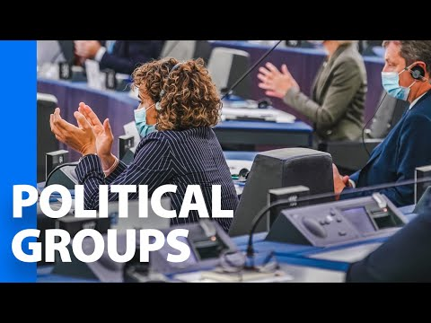 The Political Groups Of The European Parliament