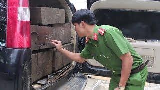 Tin Tức 24h : Liên tiếp phát hiện 4 vụ tàng trữ, vận chuyển gỗ trái phép