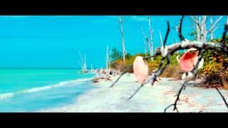 "Reggae Instrumental - ""Relaxing"" - Stafaband"
