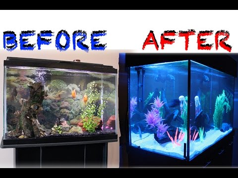UPGRADING FROM 30 TO 150 GALLON FISH AQUARIUM