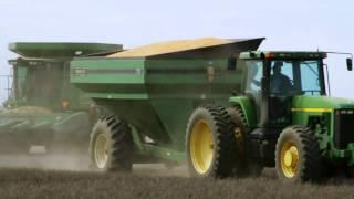Corn harvest 2010 - Fowler, KS