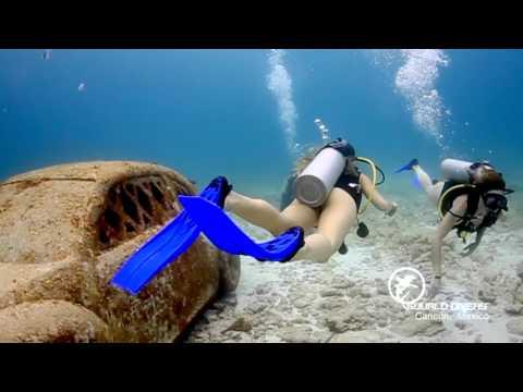 Scuba Diving Tour Cancun & PADI Courses in Cancun
