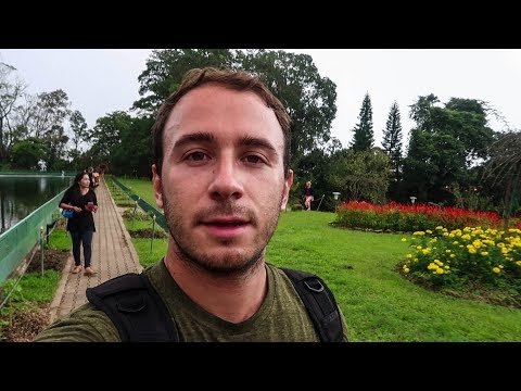 TRAVEL VLOG: DOI SUTHEP TEMPLE, CHIANG MAI, THAILAND (#5)