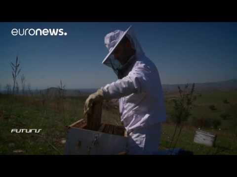 The future of food technology  Futuris