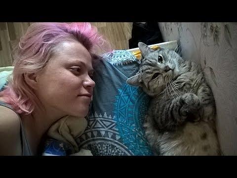 Вопрос: Почему кошка пъет воду только из-под крана?