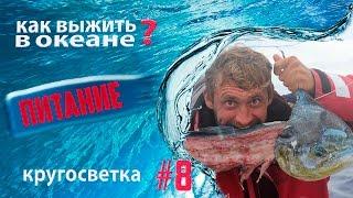Питание в океане, Евгений Ташкин