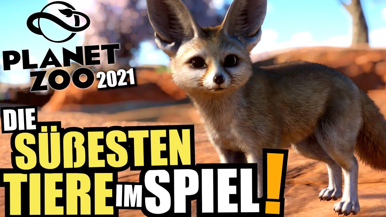 Die Süßesten Tiere im Spiel!  - Planet Zoo 2021 | Afrika Pack