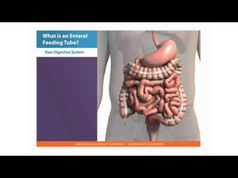 Feeding Tube Skills: What Is An Enteral Feeding Tube?