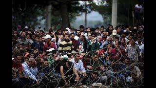السفارة الألمانية باليونان تستقبل لاجئين سوريين لبحث لجوئهم #هنا_سوريا