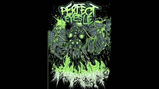 Perfect Eyes Lie - To Kill His Majesty NEW SONG 2012