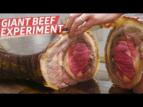 Expert Butchers Attempt to Make a Giant Beef Porchetta — Prime Time