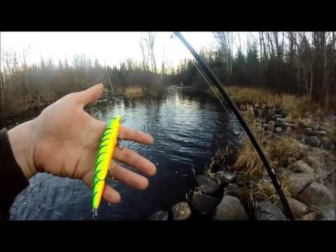 Fall Pike Fishing! Northern Wisconsin!
