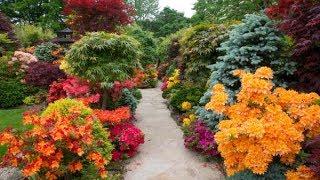Gambar cover Top 80 Beautiful Flower Garden Decor Ideas Everybody Will Love