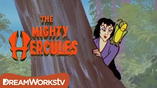 Hercules Fights a Sea Witch | THE MIGHTY HERCULES