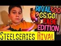 CS:GO Steelseries Rival 300 CS:GO Fade Edition обзор