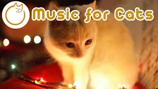 EXTRARELAXING Cat Music! Festive Songs to Calm your Cat Instantly (NEW)