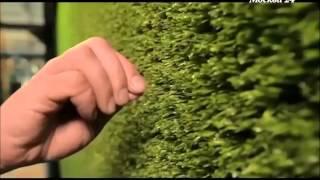 Оптилон производство искусственной травы(Оптилон, искусственная трава, производство искусственной травы, футбольный газон, завод по производству..., 2014-09-09T11:00:49.000Z)