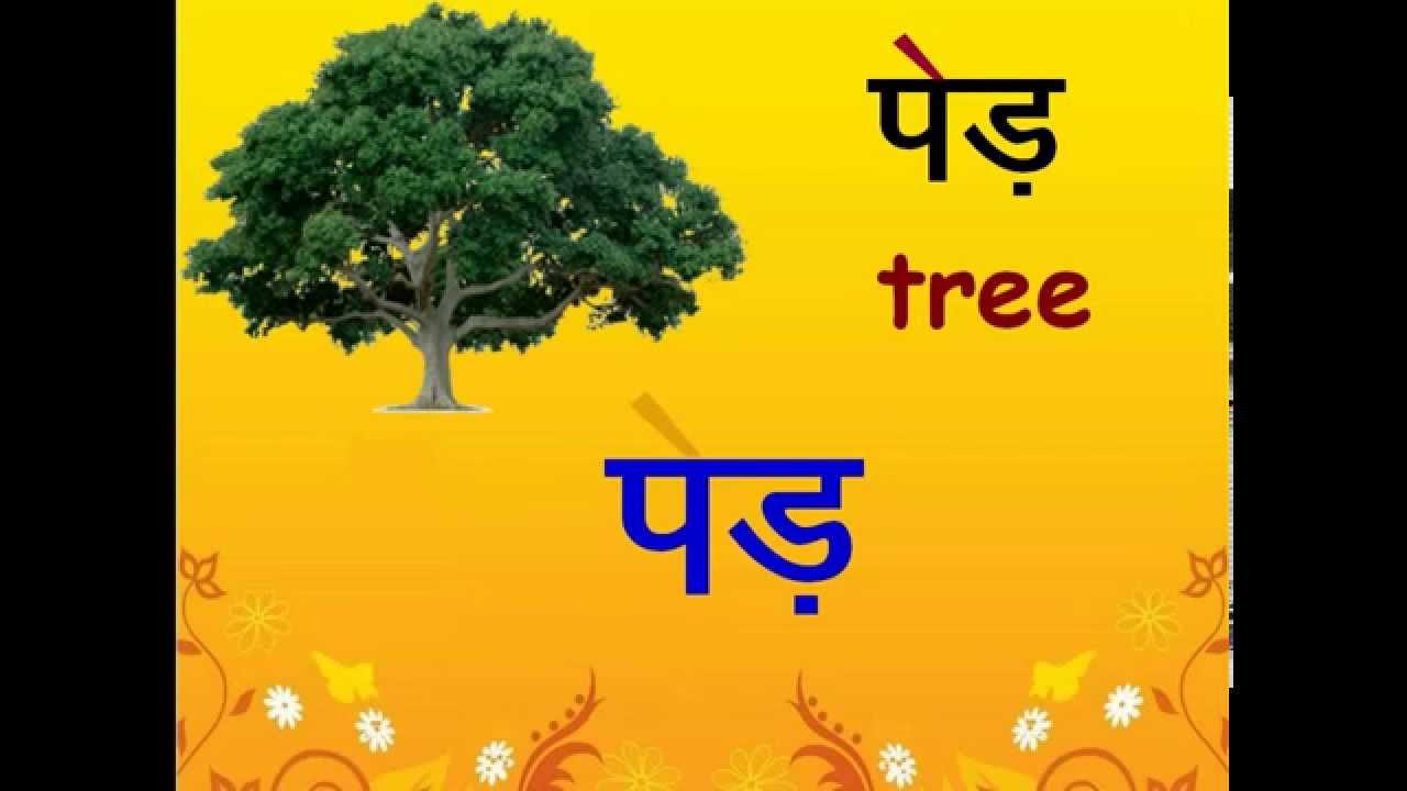 Hindi ei ki matra 2 letter words hindi ei ki matra 2 letter words youtube mitanshu Image collections