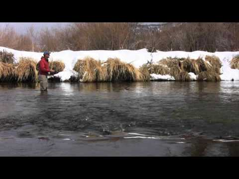 Fly Fishing Colorado Yampa River February Part 1