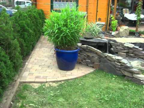 Teichfilter selber bauen aus 2 regentonnen einfach for Teichanlage selber bauen