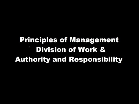 Principles of management Part - 1, Division of work | Authority & Responsibility || Business Studies
