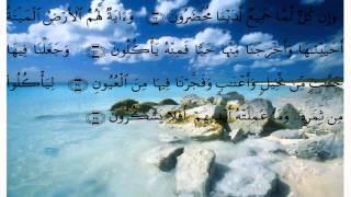 سورة يس * عبد الله خياط