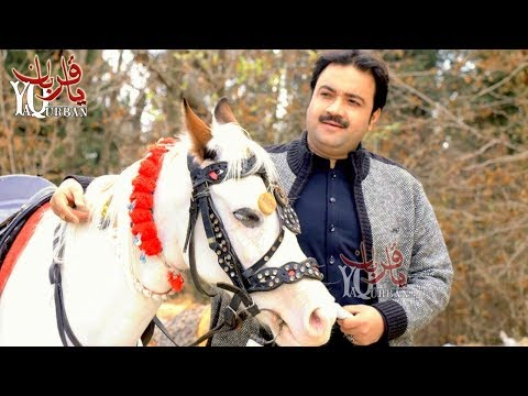 Raees Bacha Pashto New Songs 2017 ZULFAY | Raees Bacha Official Music Video