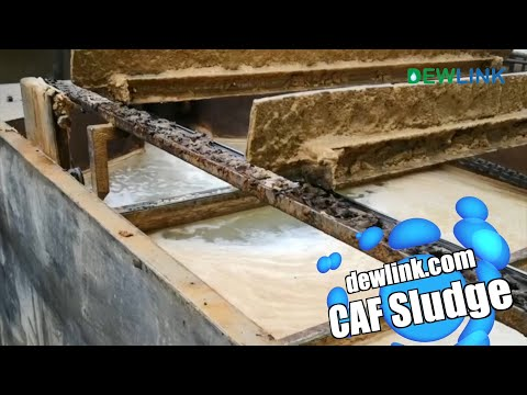 cavitation-air-flotation-sludge-dewatering-non-wearing-contactless-screw-press