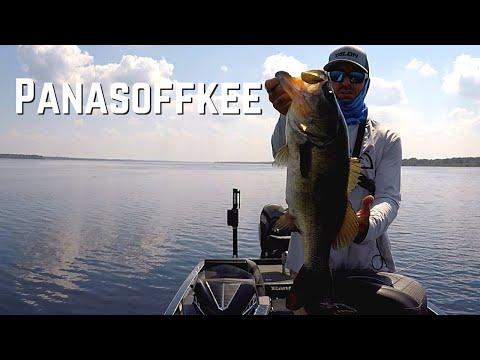 Lake Panasoffkee | TOP WATER Bass Fishing