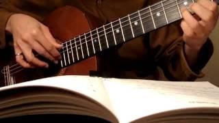 Nhớ Một Chiều Xuân. Nguyễn Văn Đông. Trémolo Guitare Romantique